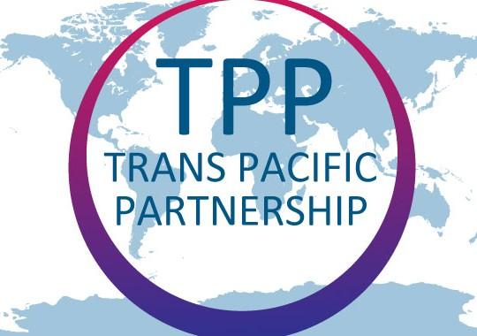重要農産物、すべて譲歩=TPP審議で森山農水相