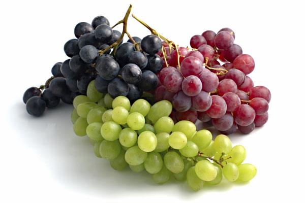 輸入ブドウ周年化へ 国産と競合の恐れ 中小スーパーのグループ