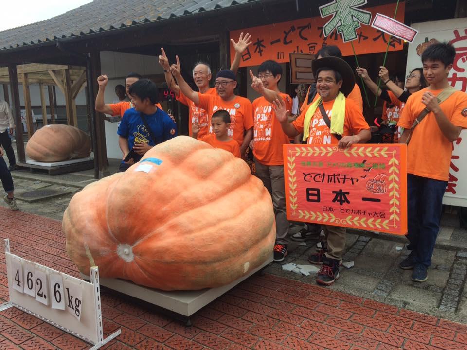 カボチャ日本一は462キロ 歴代6番目、小豆島で大会