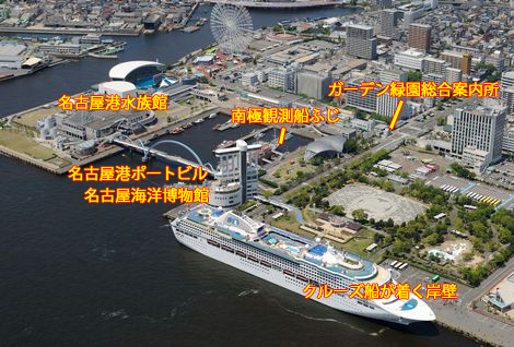 猫10匹中毒死か…名古屋港、死骸から劇物成分メソミル検出